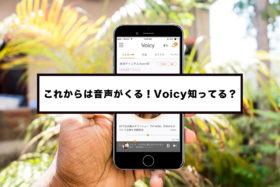 インタビューや対談記事を書くならVoicy(ボイシー)に音声投稿がおすすめ